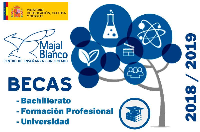 Becas estudios Posobligatorios Bachillerato y FP 2018-2019